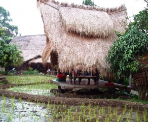 Sapu lidi Lembang