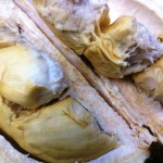 Durian Pak Guru, Padang